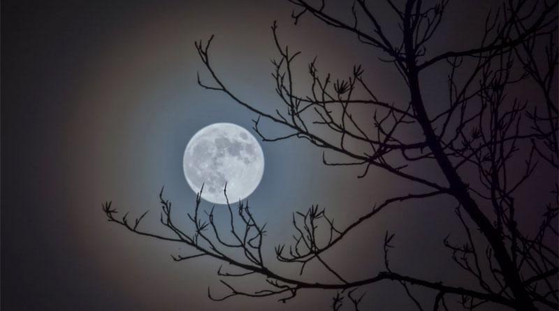 Лунный день 24 марта 2019 года
